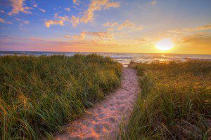 Dialectical Behavioral Therapy on Long island